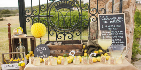 puesto-limonada-boda-03